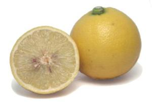 A bergamot - whose oil I don't apparently drink